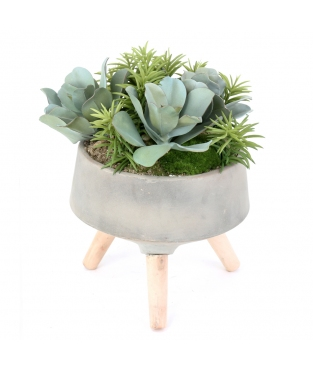 POT WITH PLANTS